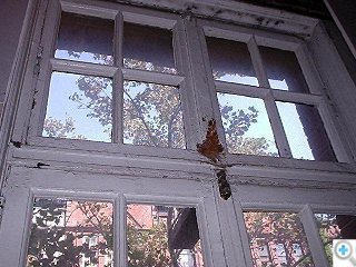 Casement Window with Transom before Restoration